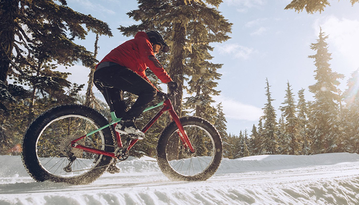 Rocky Mountain fatbiket